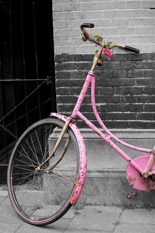 Bici rosa _ Utrech 2014